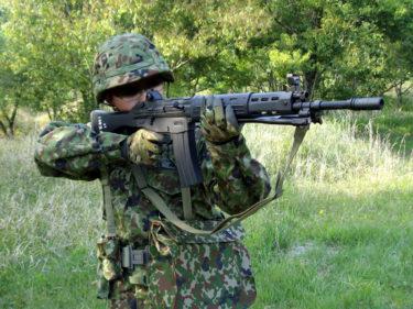 平成の自衛隊 ~ 陸上自衛隊 2型迷彩装備・官品スタイル [2000年代]
