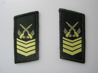 中国人民解放軍 07式領章 (実物)