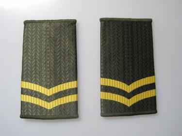 中国人民解放軍 陸軍/空軍 99式套式肩章 (実物)